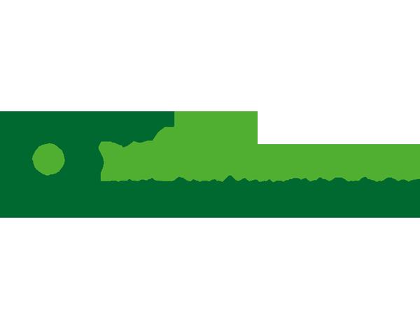 CSV Mantova